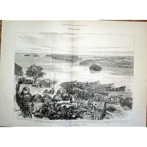 Stampa Antica 1878 del Cannibale di Stanley