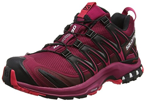 Salomon XA Pro 3D GTX, Zapatillas de Running para Asfalto para Mujer, Fucsia (Beet Red/Sangria/Black), 38 EU