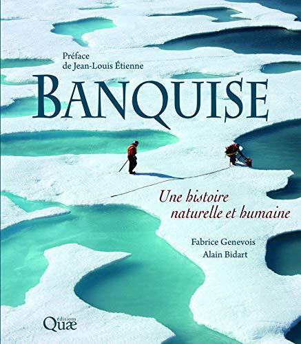 Banquise