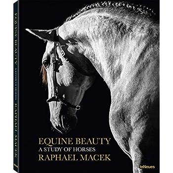 Equine beauty : A study of horses, édition français - anglais - allemand - espagnol