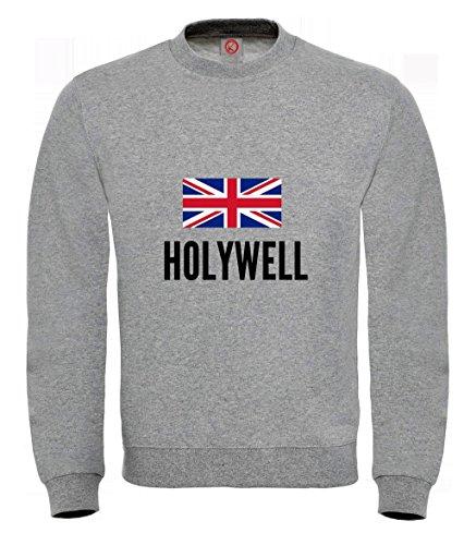 Felpa Holywell city Gray