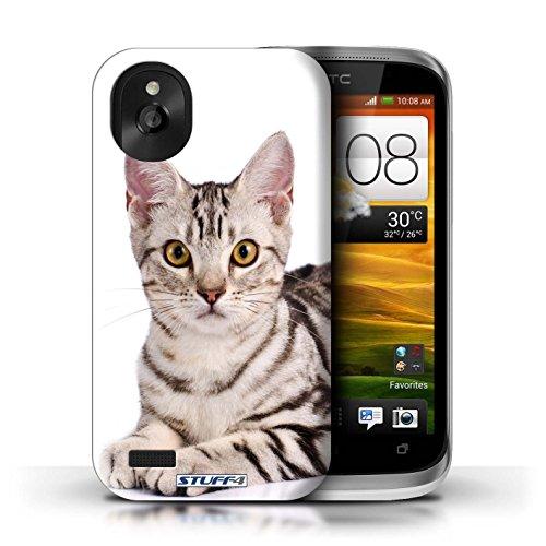 Kobalt® Imprimé Etui / Coque pour HTC Desire X / Abyssinien conception / Série Espèces de chats American Shorthair