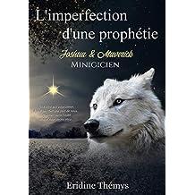 L'imperfection d'une prophétie - Minigicien T0,5