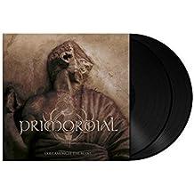 Exile Amongst the Ruins [Vinyl LP]