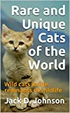 Rare and Unique Cats of the World: Wild cats in the remnants of wildlife