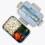 Bento Box - Fiambrera de seguridad de trigo natural de 1000