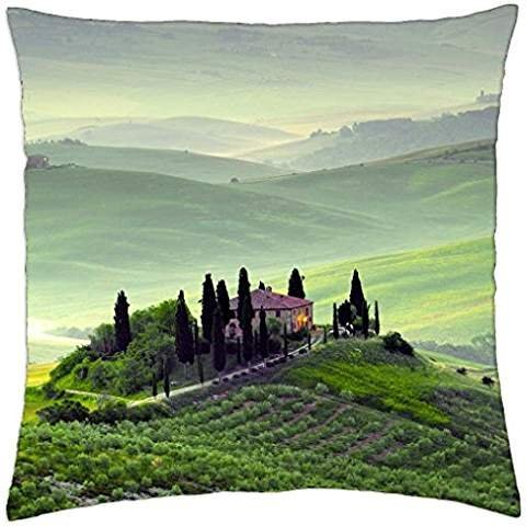 wondrous hilltop farms in pienza tuscany - Throw Pillow Cover Case (18