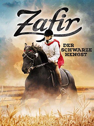 Zafir: Der schwarze Hengst
