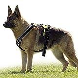 rabbitgoo No-Pull Hundegeschirr für große Hunde Welpengeschirr Einstellbar Weich Geschirr Sicher Kontrolle Brustgeschirr Gepolstert Grün XL