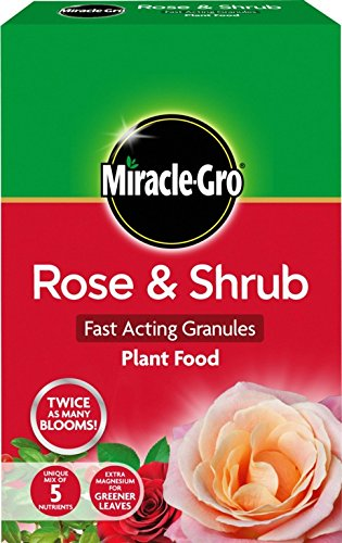 Miracle Gro Rose & Arbuste Plant Food 3 kg carton