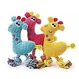 Hund Plüsch Kauspielzeug, 3 Paket Baumwolle Bissfest Hund Molars Sound Spielzeug Quietschender Hund für Kleine Hunde PetsTraining Spielzeug 3 Farbe Set 26x16 cm