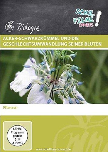 Preisvergleich Produktbild Acker-Schwarzkümmel und die Geschlechtsumwandlung seiner Blüten