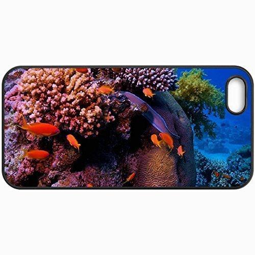 Unique Design Cellphone Case For iPhone 5/5S Case Sea Life 6 Black