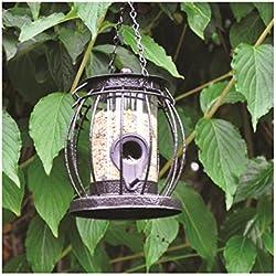 Kingfisher Comedero para pájaros en forma de farol + regalo, Seed