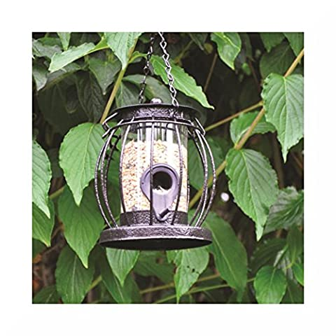 Kingfisher Caged Feeder + Gift (Seed)