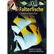 Falterfische: Chaetodontidae