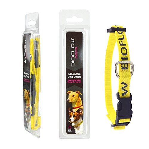 Bioflow-Dog-Collar-Yellow-Large-up-to-65cm