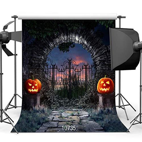 GzHQ 10735 Halloween-Horror-Nacht-Hintergrund, 3 x 3 m, Eisentor, Kürbiss, Laterne, Fotohintergrund, Studio-Requisiten