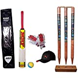 RPM Sports Small Boys Cricket Set, Wooden Cricket Kit with Carry Bag(Colour by Assorted)