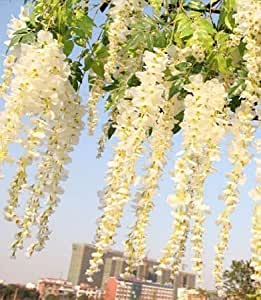 Coobl®3.6 Ft Realistic Romantic Classic Artificial Fake Wisteria Vine Ratta Silk Flowers for Garden Floral Decoration DIY Living Room Hanging Flower Plant Vine Home Party Wedding Simulation Decor 12 Pcs (White)