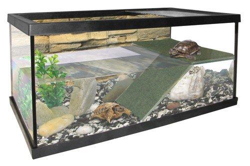 Pacific Terrarium Aquarium für Reptilien und Amphibien