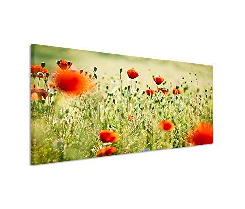 Preisvergleich Produktbild 150x50cm Leinwandbild auf Keilrahmen Wieso Mohnblumen Sommer Wandbild auf Leinwand als Panorama