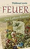 Image de Feuer: Der Luther-Roman