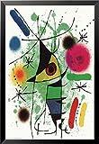 gerahmt Der singende Fisch vON Joan Miro 36x 24Museum Poster Kunstdruck