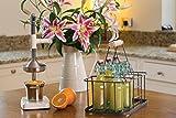 KitchenCraft Living Nostalgia Wire Metal Milk Crate/Bottle Carrier, 29 x 20 x 13 cm - Grey