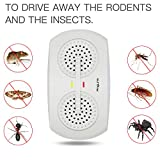 Pest Control Dual Ultrasonic Pest Repeller Mouse Repellent Plug in Insect Repellent Pest Deterrent for Indoor Rodents Mouse Mice Rat Cockroach Flies(2 Pack