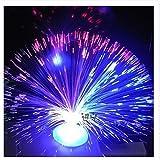 GONO Farbwechselnde Faseroptik Brunnen – Nachtlicht beruhigende Stimmungslampe für Party-Dekorationen