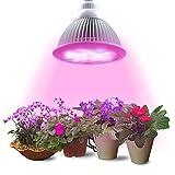 Lumin Tekco LED Pflanzenlampe, E27 12W Led Wachstumslampe für Wasserpflanzen, Saatgut, Blumen, Topf- und Zimmerpflanzen, Gemüse
