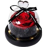 Hyindoor Rosa Eterna con Luces LED Rosa Natural Presevada en Cúpula de Vidrio sobre Base Pino Flor Encantada para San Valentí