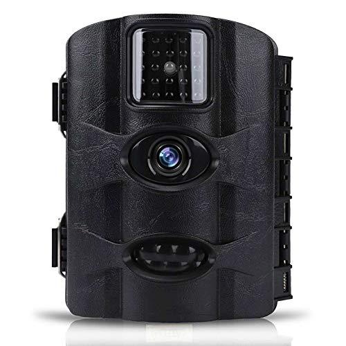 MC.PIG Wildkamera Jagdkamera 16MP 1080P HD Wildlife Jagd Cam Motion aktivierte Nachtsicht 65ft / 20m Erfassungsbereich IP65 Wasserdichte Lagerung bis 32 GB (Farbe : B)