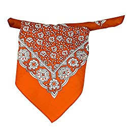 Orange, White & Black Paisley Patterned Bandana Neckerchief from Ties Planet