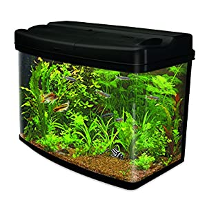Interpet Fish Pod Glass Aquarium Fish Tank Including CF3 Cartridge Filter, 120 L