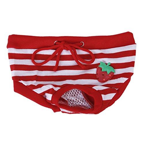 Pad Kostüm Sanitär (Weiblich Haustier Hund Sanitär Hose Panty Striped Windelslip Größe XL - Rot)