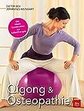 Qigong & Osteopathie: Die ideale Kombination zur Selbsttherapie (BLV) -