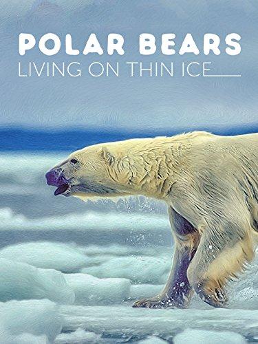 polar-bears-living-on-thin-ice
