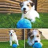 Comtervi Haustier-Elektrischer Spielzeug-Ball, Mini-Roboter-Reiniger-Haustier-Bälle für Hunde Rollender Ball-Katzen-Spielzeug, Elektrischer angetriebener sauberer Haushalts-Microfiber-Ball, 4pcs