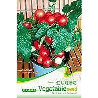 Bonsai Red 'perla' Semi Mini Cherry Pomodoro, originale Pack, 20 semi / Pack, organico pomodoro B018