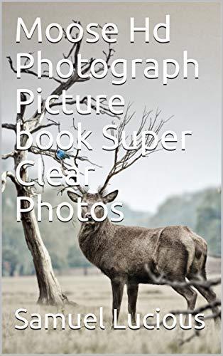 Moose Hd Photograph Picture book Super Clear Photos 89a326d8b5ea