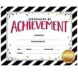Creative Teaching 'Award, helle Zertifikat, groß (2564)