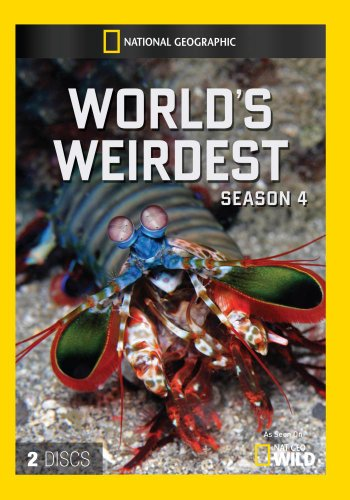 Preisvergleich Produktbild World's Weirdest Season 4