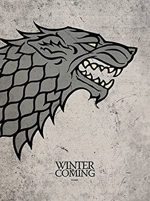 Novelty Game Of Thrones-stark-winter Is Coming - Photo Fridge Magnet