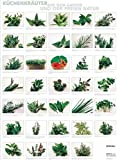Plakat Küchenkräuter aus dem Garten und der freien Natur