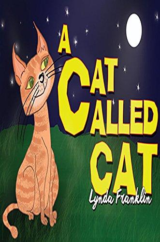 a-cat-called-cat