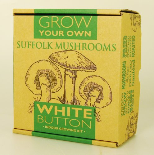 Small Taylors White Mushroom Grow Your Own Kit
