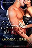 Caressed by a Crimson Moon: Volume 3 (Rulers of Darkness)