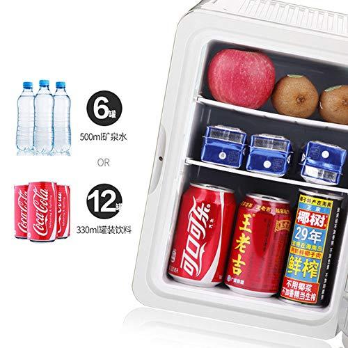 51TZZifYH9L - JCDZSW Mini termostato de refrigerador pequeño para automóvil de 10L, Apto para refrigerador de Piel, Alimentos, medicamentos, hogar y Viajes,Tyrantgold